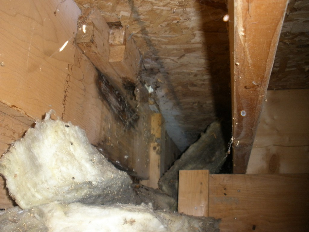 Property Inspections Anchorage Ak Gallery